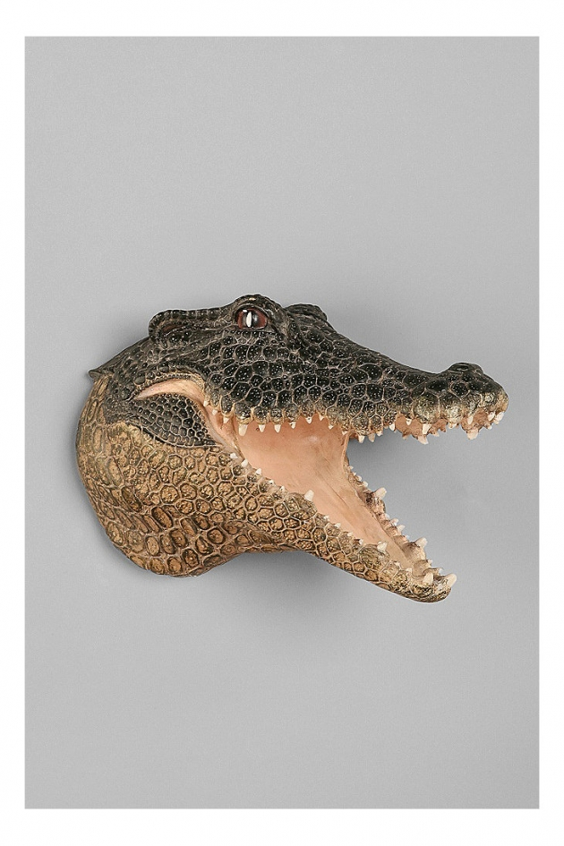 Crocodile Head Wall Sculpture