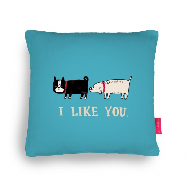 I Like You Cushion