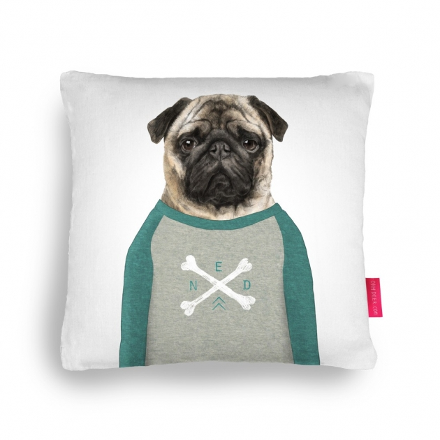 Ned Cushion