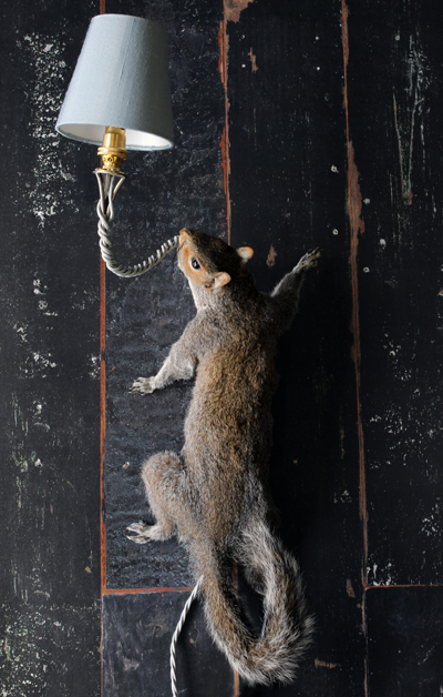 Squirrel Wall Light