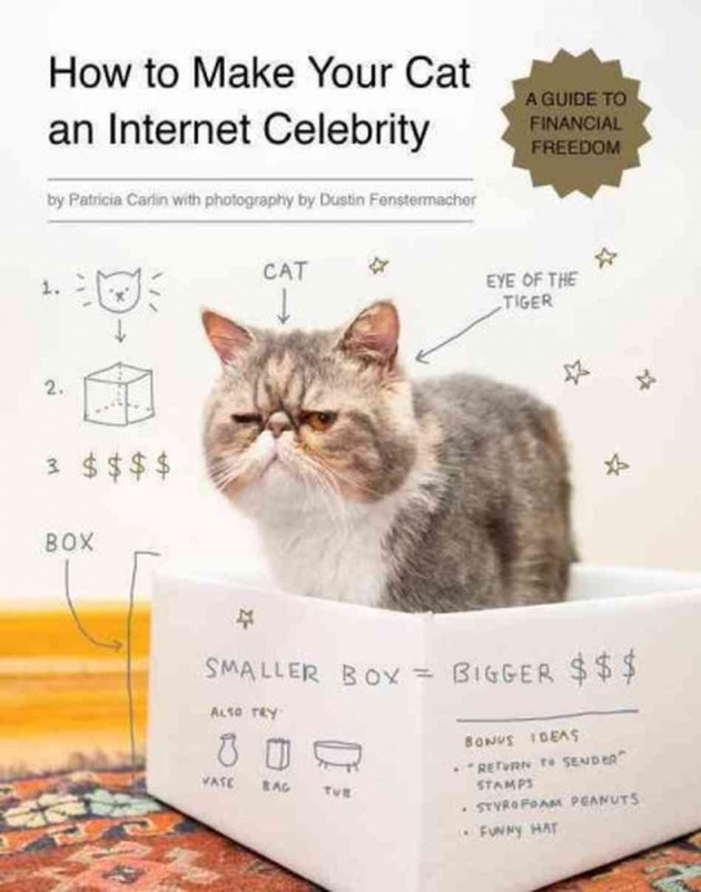 How To Make Your Cat An Internet Celebrity Book