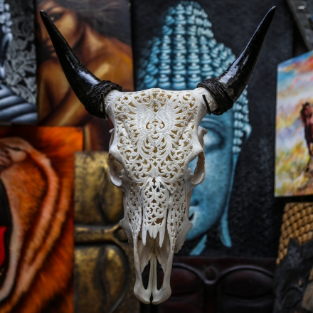 Beautiful Hand Carved Steer/ Cow Skull with Horns