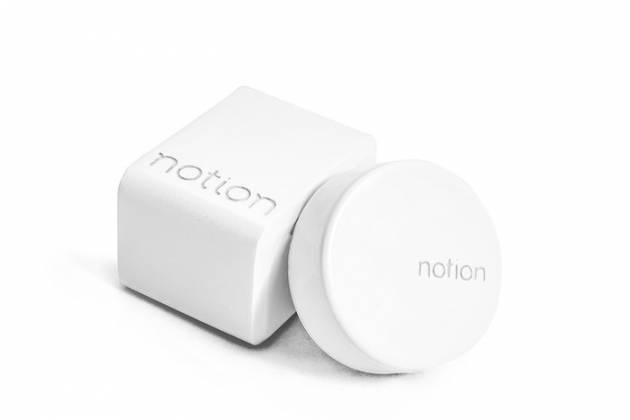 Notion: Be home, even when you're not