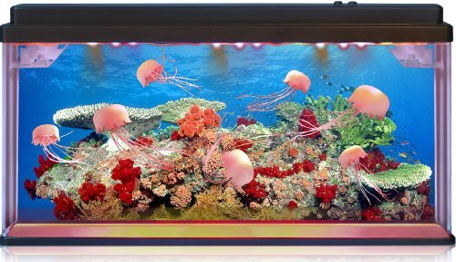 Moving Jelly Fish Tank with LED lights, 3D backing – STUNNING! Fantastic gift!