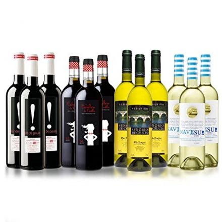 Spanish Red and White Wine Mixed Selection Case of 12