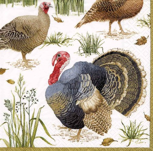 Caspari Entertaining with Caspari Wild Turkey Paper Cocktail Napkins, Pack of 20